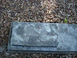 Euel Ollie Copeland