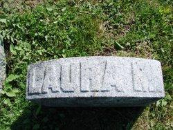 Laura M Cook