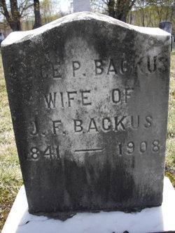 Alice P. <i>Clark</i> Backus