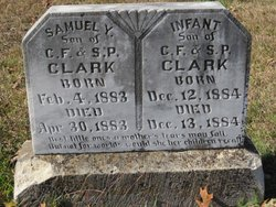 Samuel Y Clark