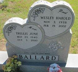 Trellis June Ballard
