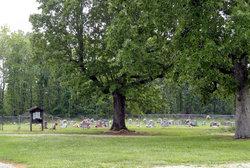 Many Springs Cemetery