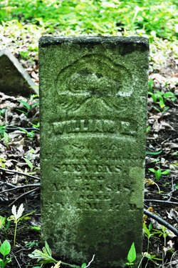 William H Stevens