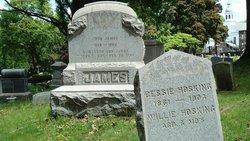 Mary Elizabeth Bessie <i>James</i> Hosking