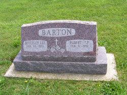 Robert J Barton