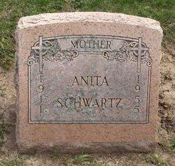 Anita <i>Bramstedt</i> Schwartz