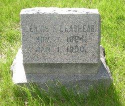 Dennis F Brashear