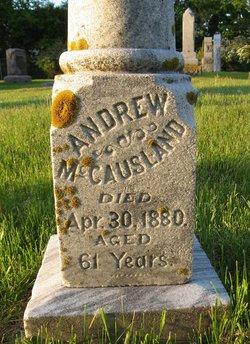 Andrew McCausland