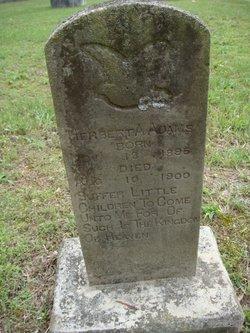 Herbert A Adams