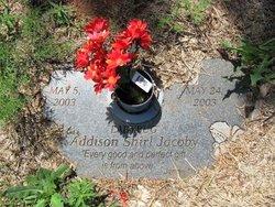 Addison Shirl Jacoby
