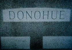 Elizabeth <i>Foutz</i> Donohue