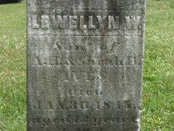 Lewellyn W Ives