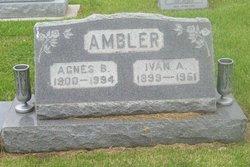 Agnes B. Ambler