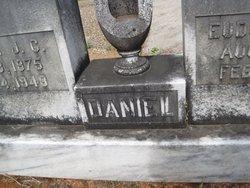 William J C Daniel