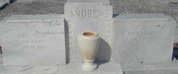 James Henry Andrews