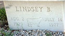 Lindsey B Hawkins