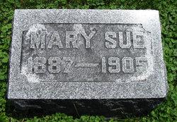 Mary Sue Farmer