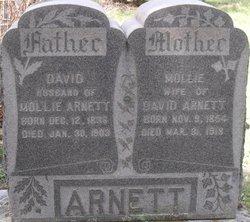 Mollie Arnett