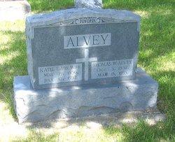 Thomas William Alvey