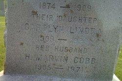 Henry Marvin Cobb