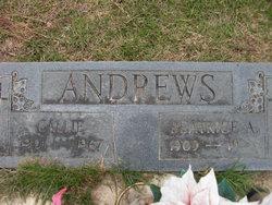 Beatrice <i>Allen</i> Andrews