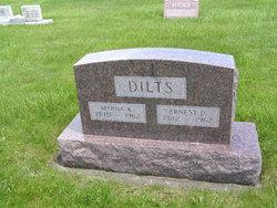 Ernest D Dilts