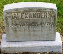 Hester J Alexander