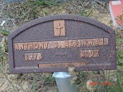 Anthony Brad Aspinwall