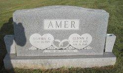 Glynn Franklin Amer