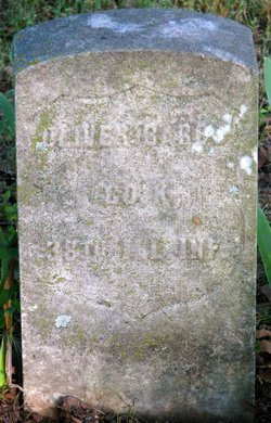 Oliver Babbs (Perry)