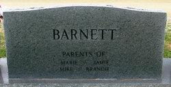 Alford Lee Al Barnett, Jr