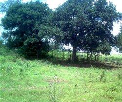 Escondido Cemetery