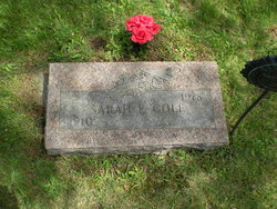 Sarah E. Cole