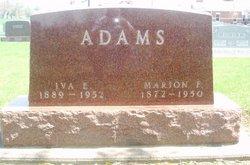 Marion F Adams