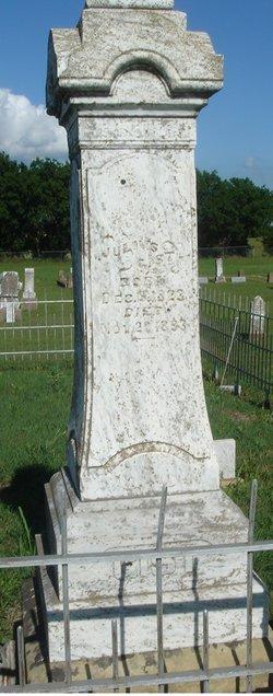 Julius Nathaniel Gist