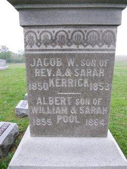 Albert Pool