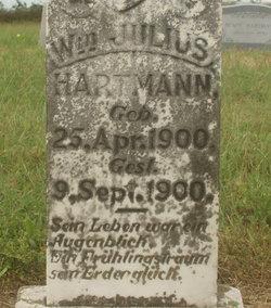 Wm Julius Hartmann