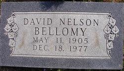 David Nelson Bellomy
