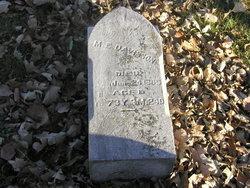 M. E. Davisson