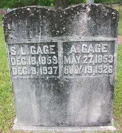 Sarah Lucinda <i>Wolfe</i> Gage