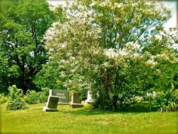 Boones Mill Cemetery