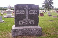 Jane <i>Hughes</i> Agnew