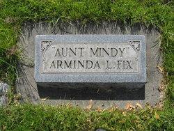 Arminda Lucinda Fix