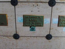 Brandee D Abel