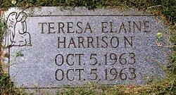 Teresa Elaine Harrison