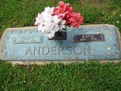 Floyd Franklin Anderson