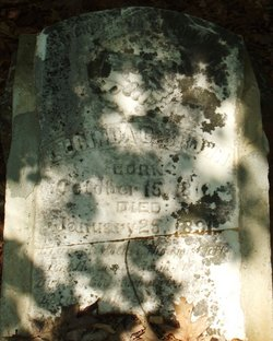 Lucinda C. <i>Laseter</i> Brown