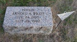 Arnold A. Wildt