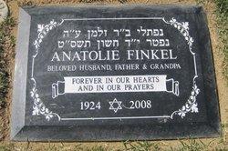 Anatolie Finkel