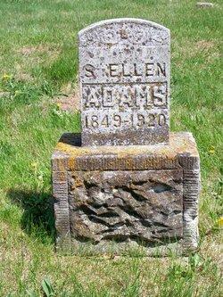 Susan Ellen Adams
